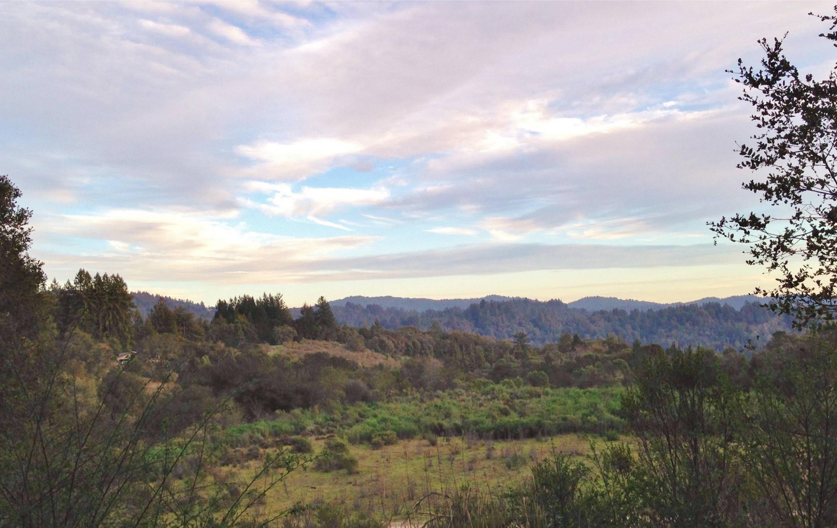 Los Gatos Mountains