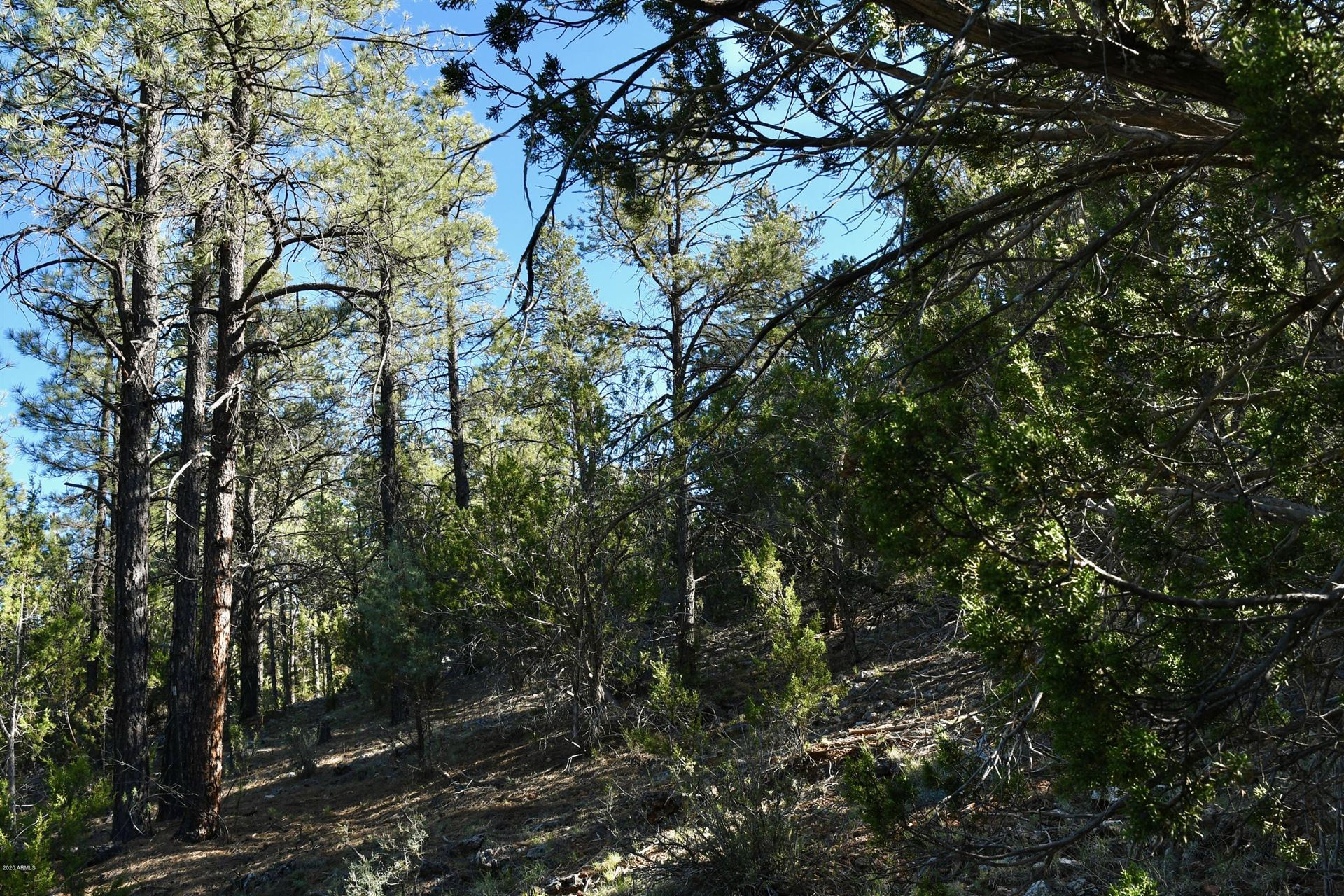 Property Image Of 2981 Ranch House Road In Overgaard, Az