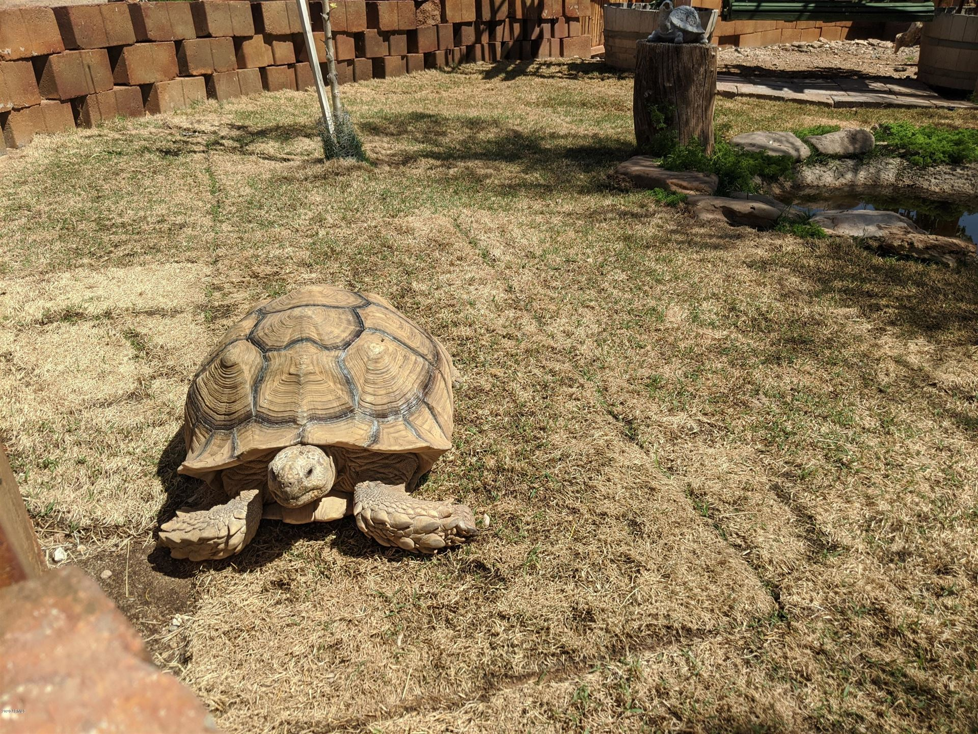 Property Image Of 3019 W Trail Drive In Phoenix, Az