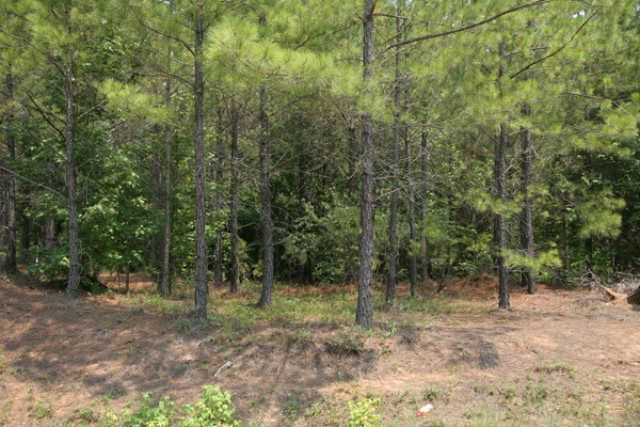 Property Image Of 0 Barford Road In Edgehill, Ga