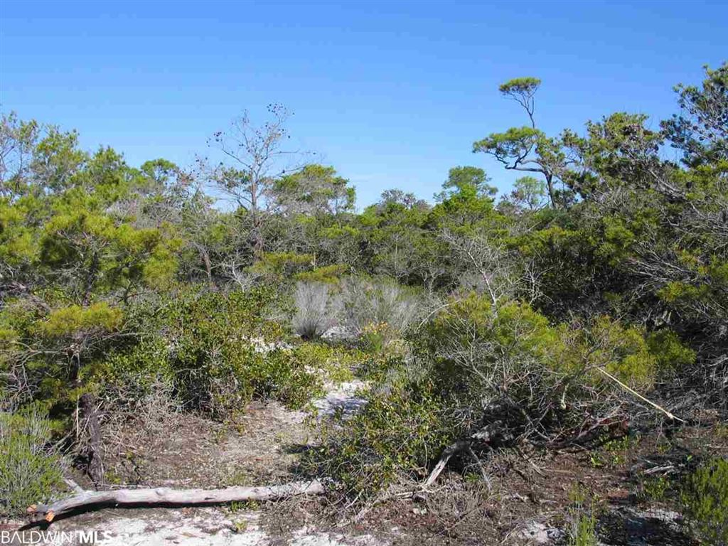 Property Image Of 0 Diamond Dr In Gulf Shores, Al