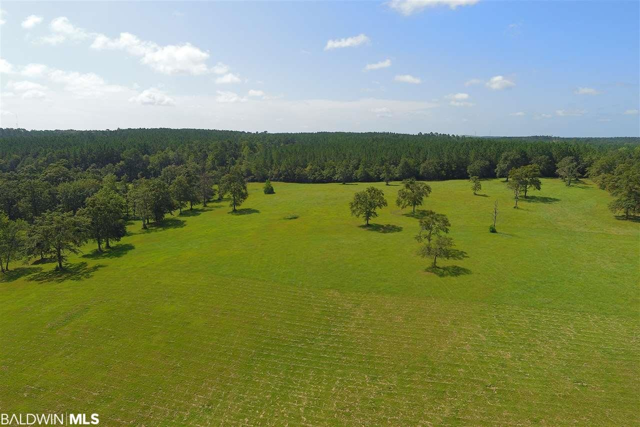 Property Image Of 900 Jacks Branch Road In Cantonment, Fl