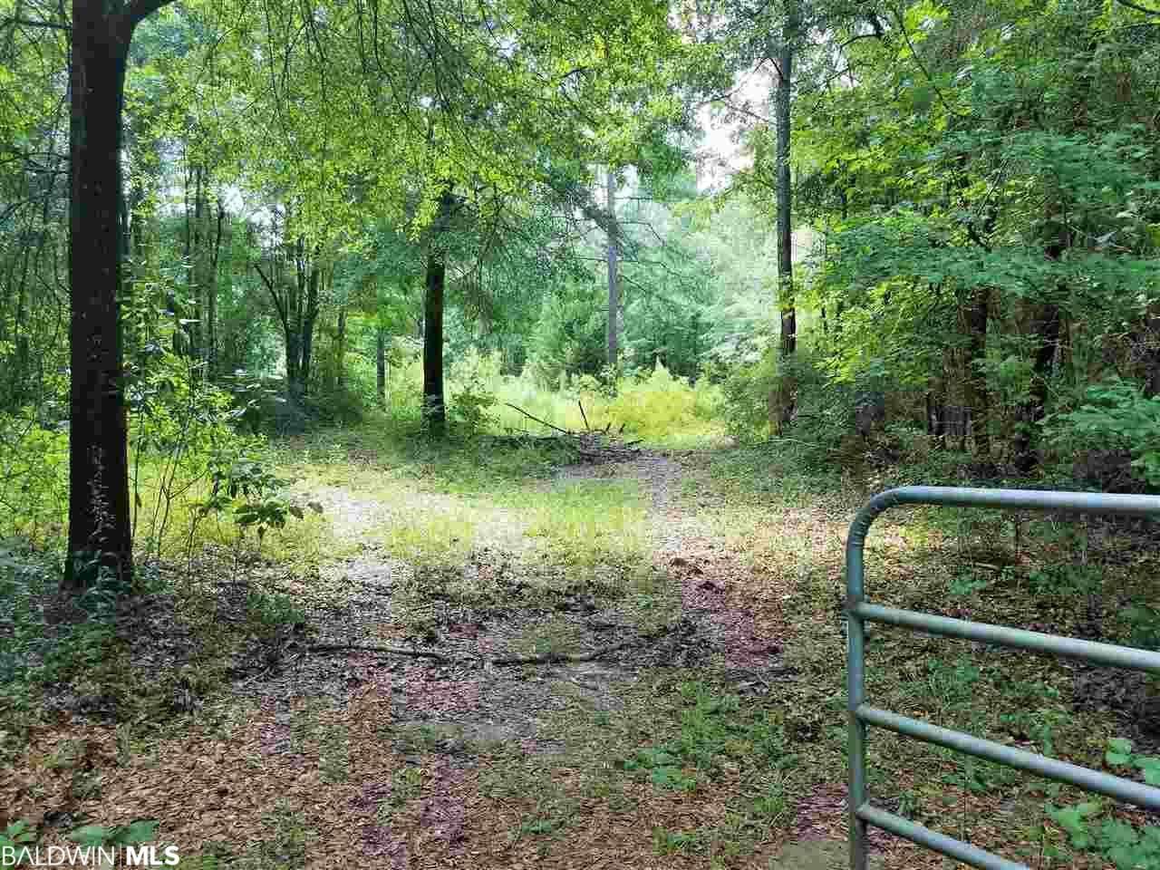 Property Image Of 0 Brown Road In Mcdavid, Fl