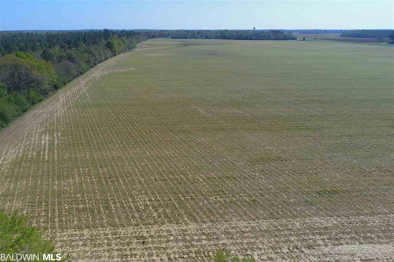 Property Image Of 7140 N Highway 99 In Century, Al