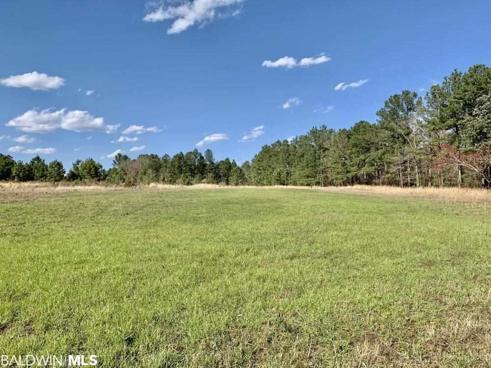 Property Image Of 0 Highway 17 In Deer Park, Al