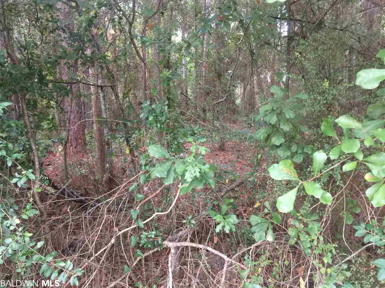 Property Image Of 0 Pineview Dr In Foley, Al