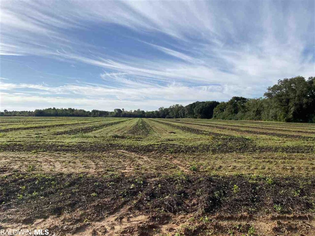 Property Image Of 0 County Road 26 In Foley, Al