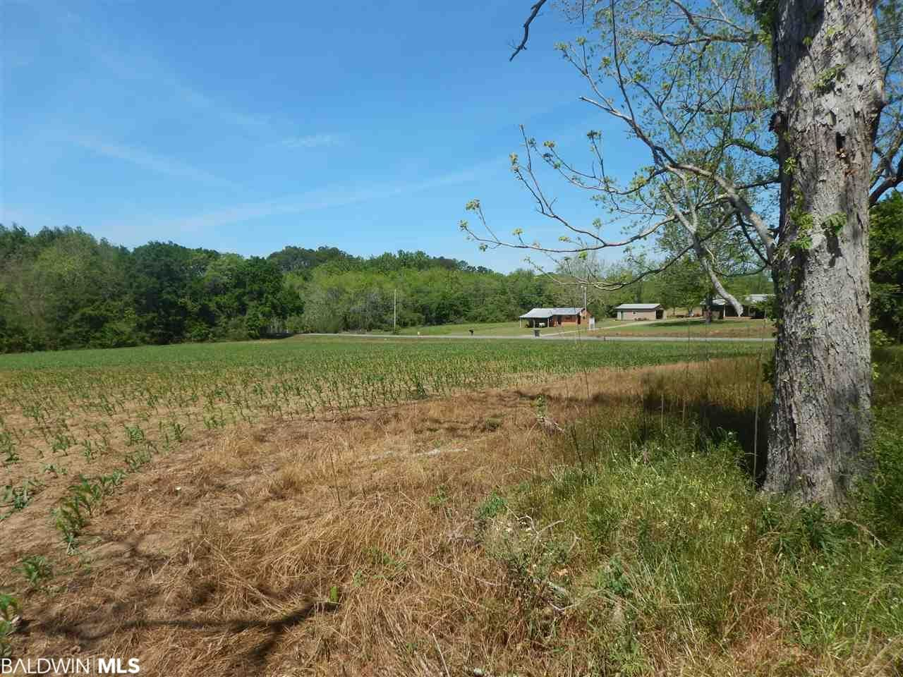 Property Image Of 0 Fairhope Avenue In Fairhope, Al