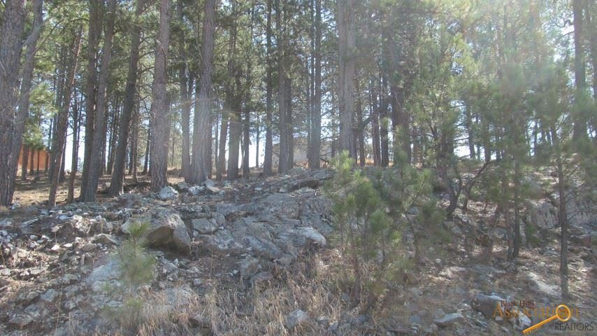Property Image Of Tbd Pine Mt Ave In Hill City, Sd