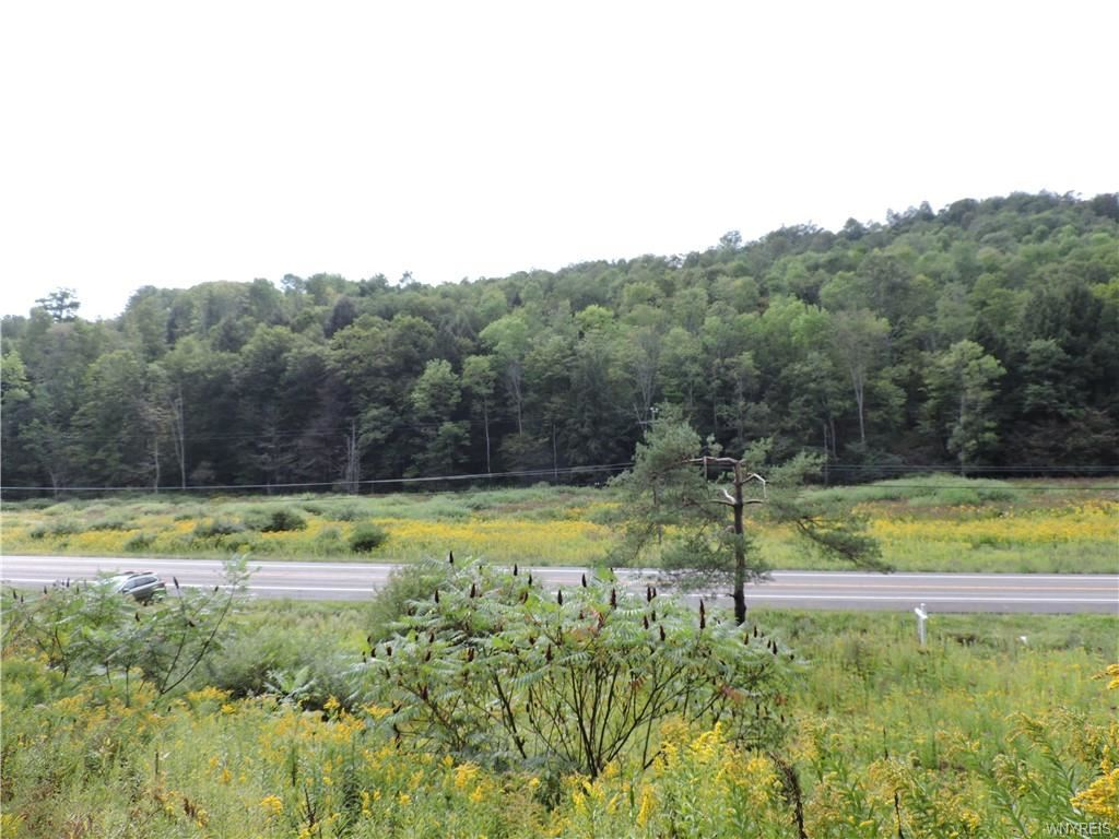 Land at 6806  NYS Route 219  North,