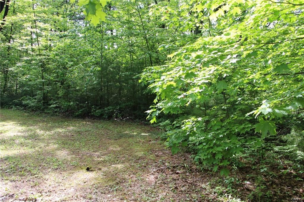 Property Image Of 20650 Muskellunge Bay Lane In Sackets Harbor, Ny
