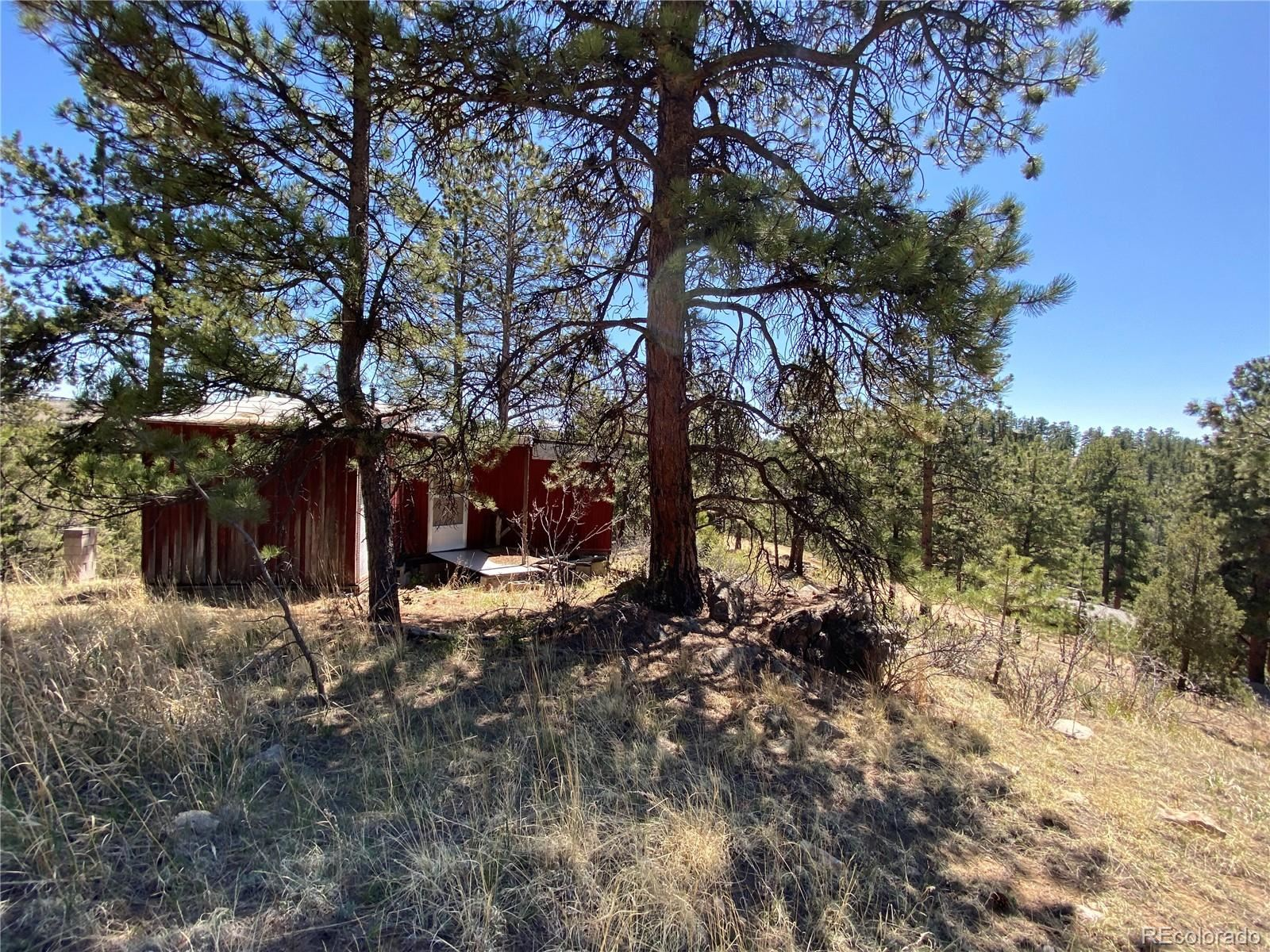 Property Image Of 517  Juniper Lane In Bailey, Co