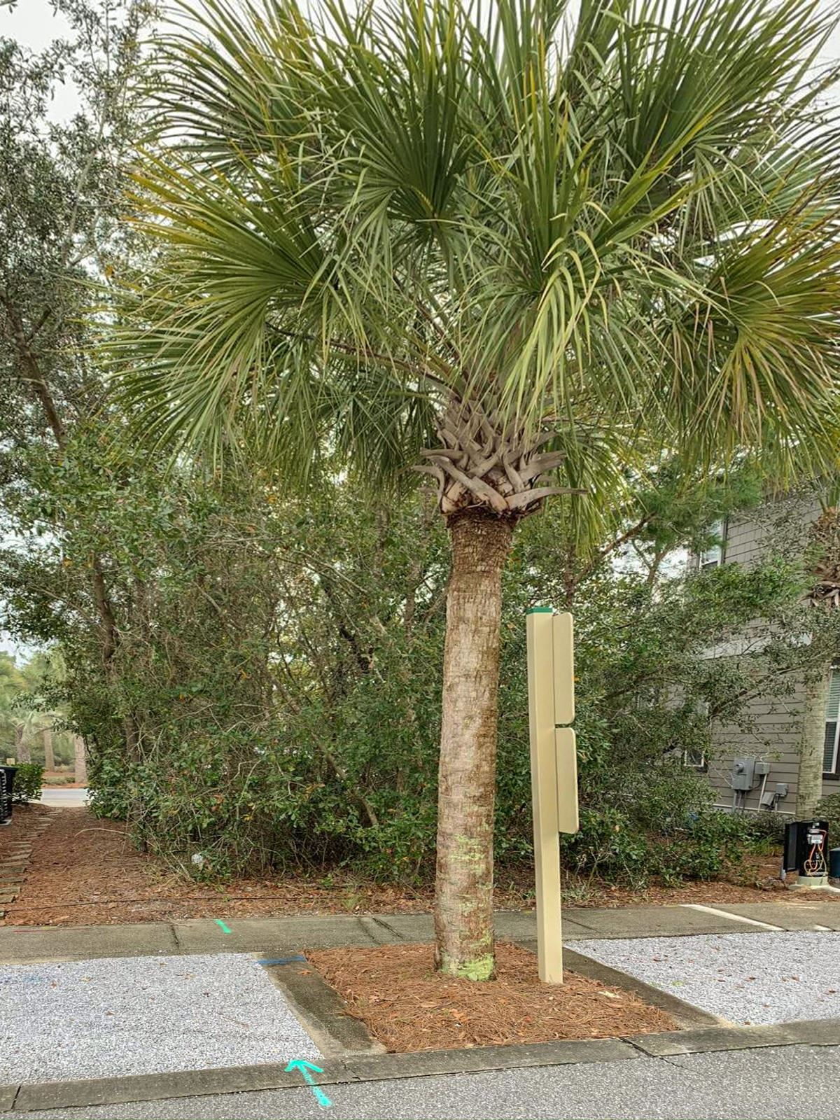 Property Image Of Lot7blkc Beach Bike Way In Inlet Beach, Fl