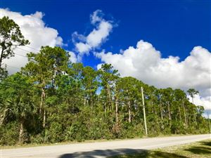 Xx Okeechobee, Loxahatchee Groves, FL, 33470, LOXAHATCHEE GROVES Home For Sale