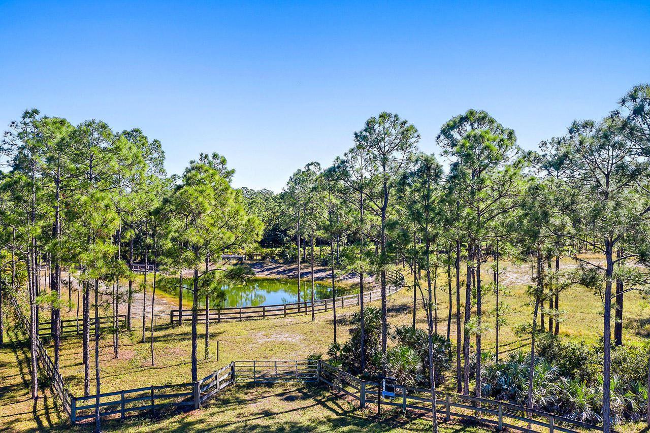 Caloosa Properties For Sale