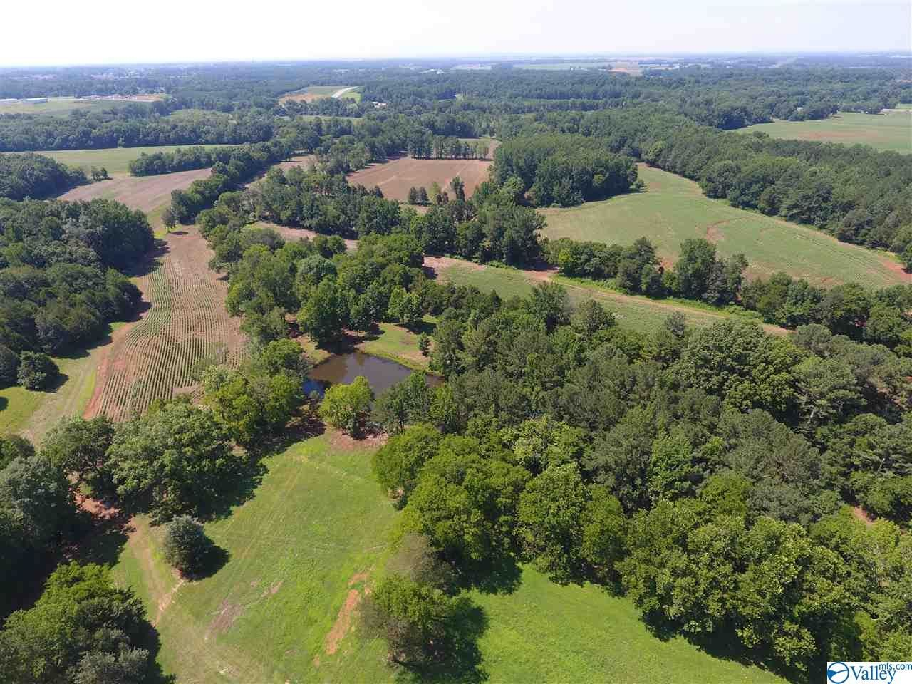 Property Image Of 14185 Lipscomb Road In Harvest, Al