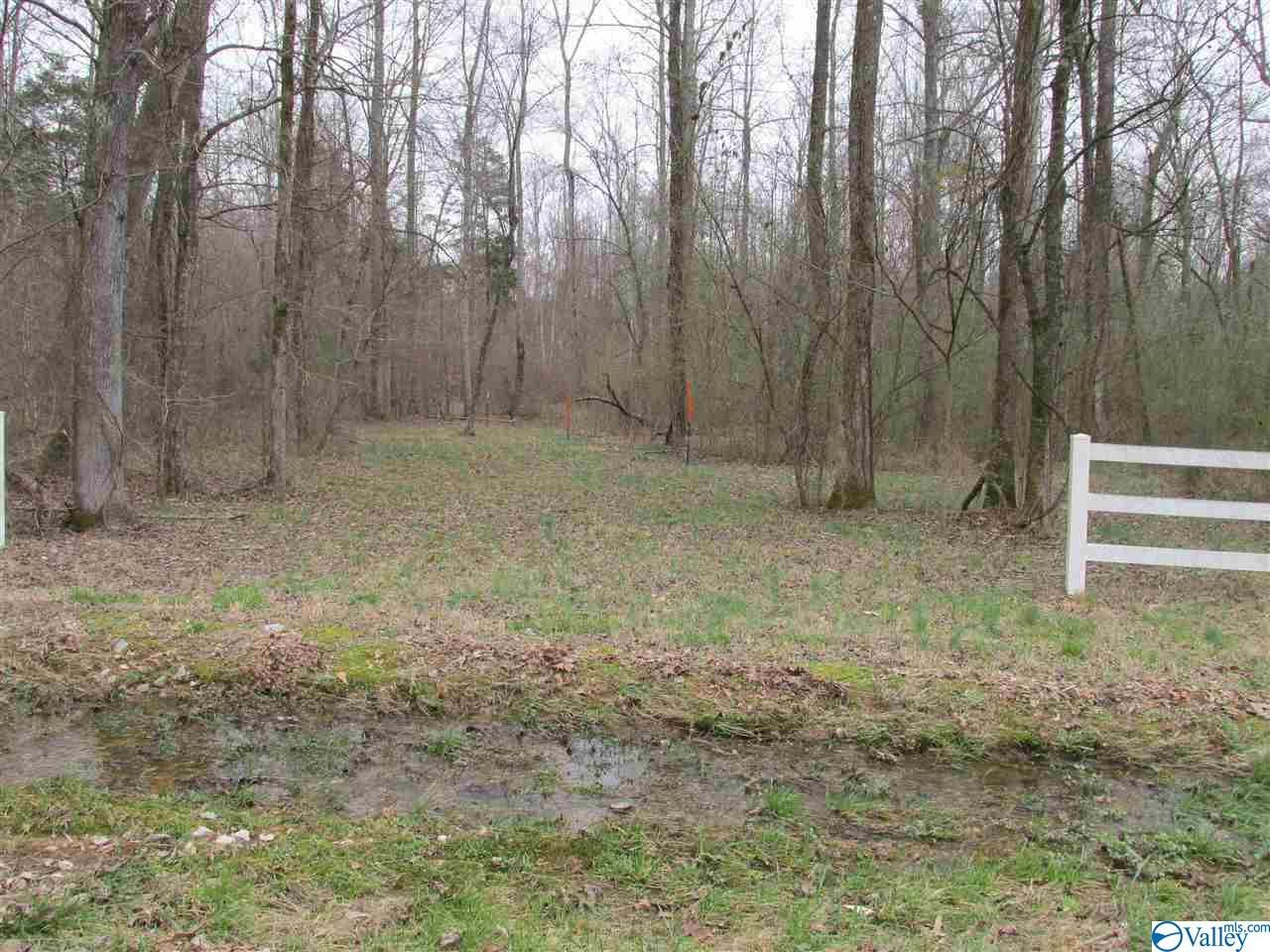 Property Image Of 0 Beth Road In New Market, Al