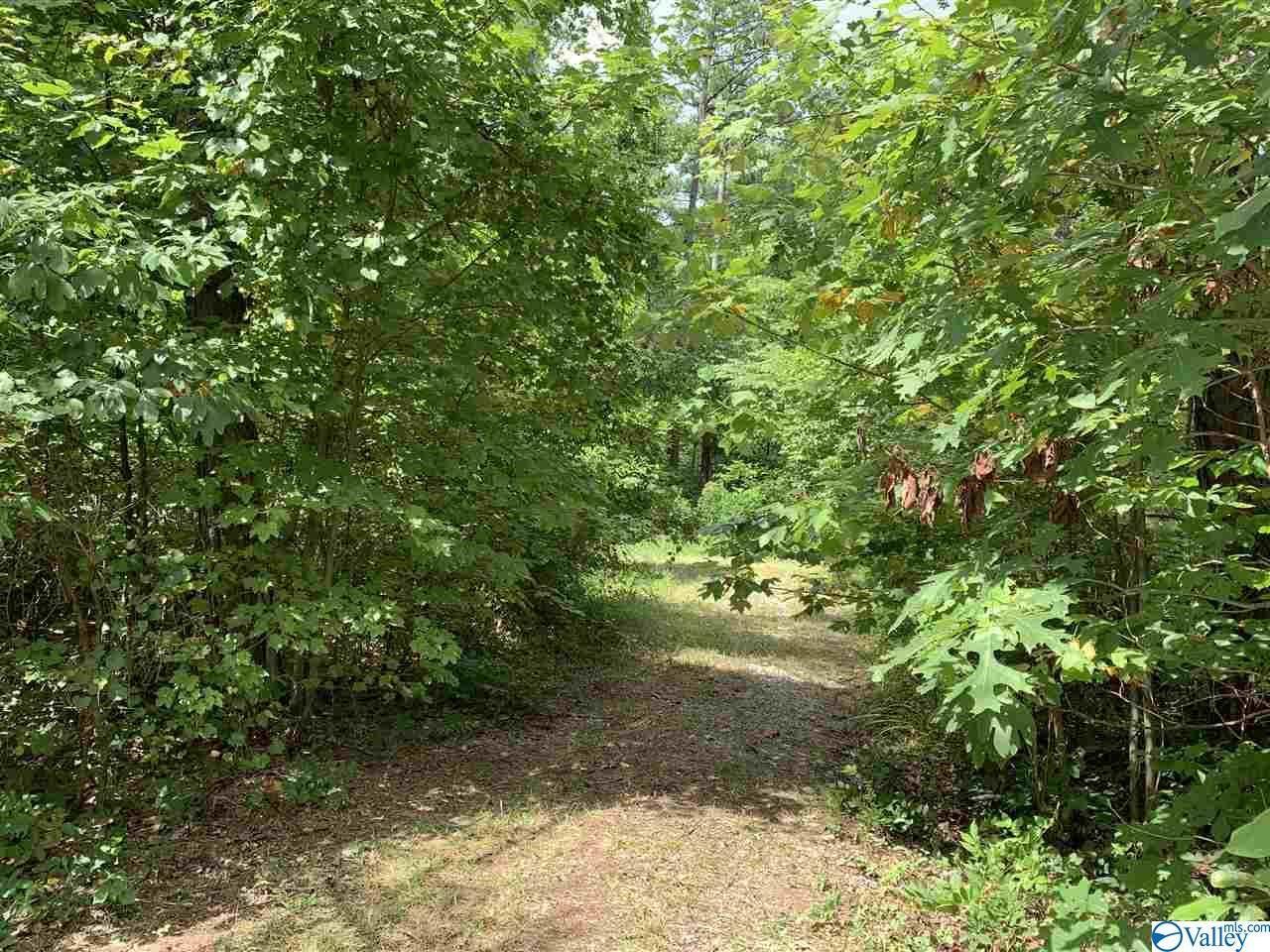Property Image Of 0 County Road 189 In Bridgeport, Al