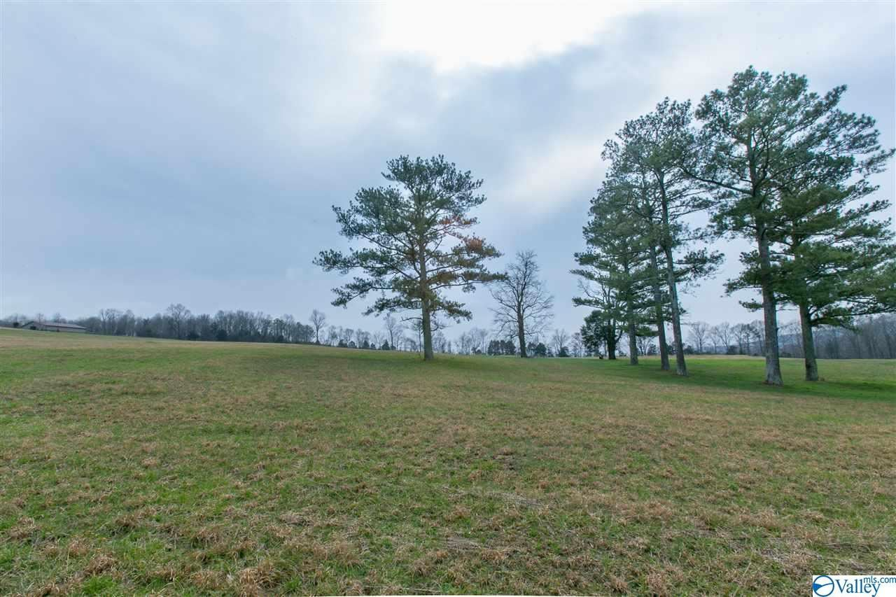 Property Image Of 220 Keiffer Circle In New Market, Al