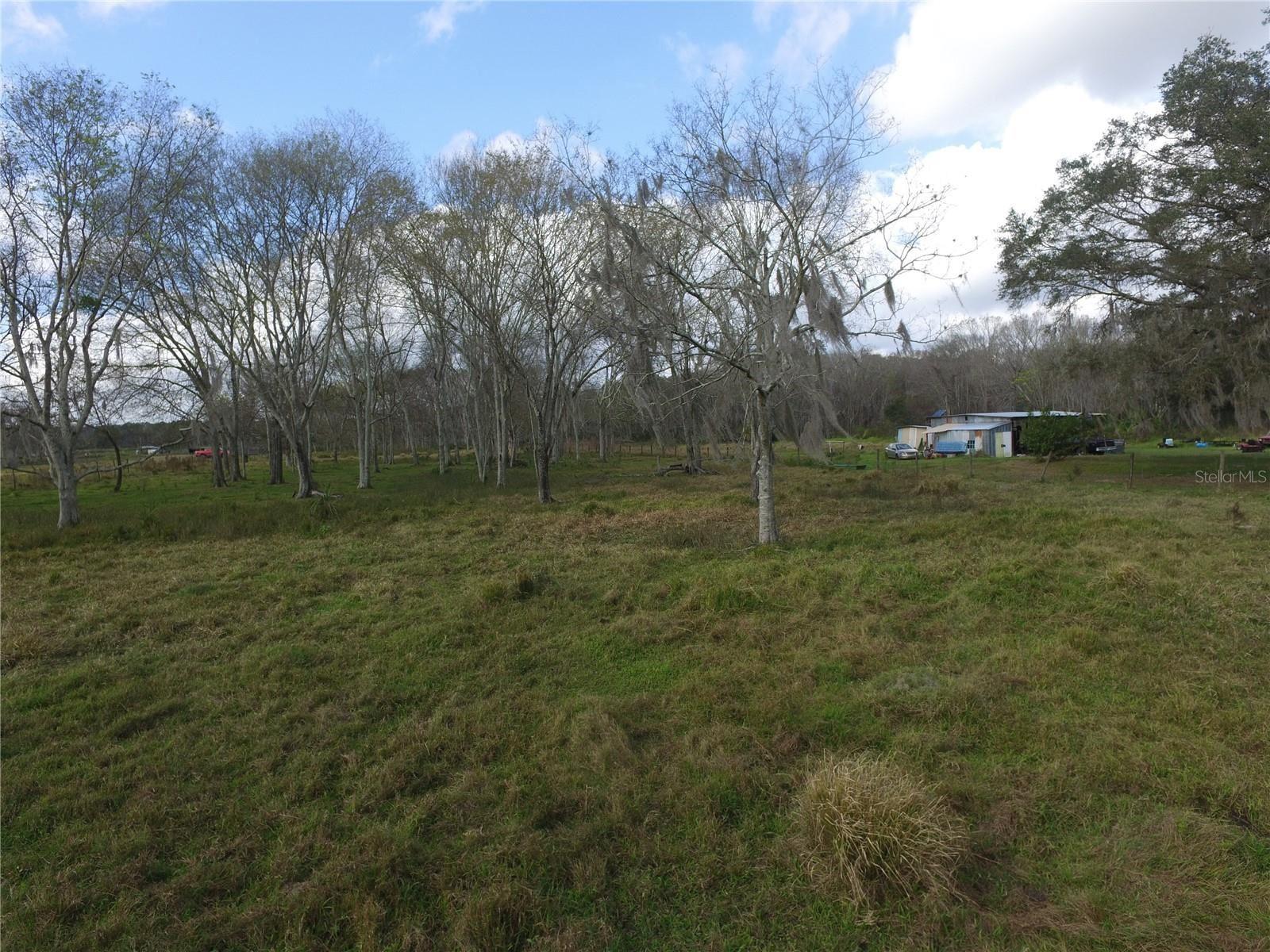 PAUL BUCHMAN HIGHWAY                                                                               Plant City                                                                      , FL - $239,990