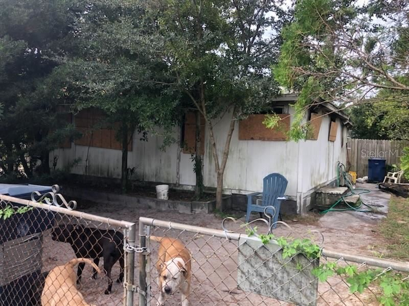 Property Image Of 1016 E Sitka Street In Tampa, Fl