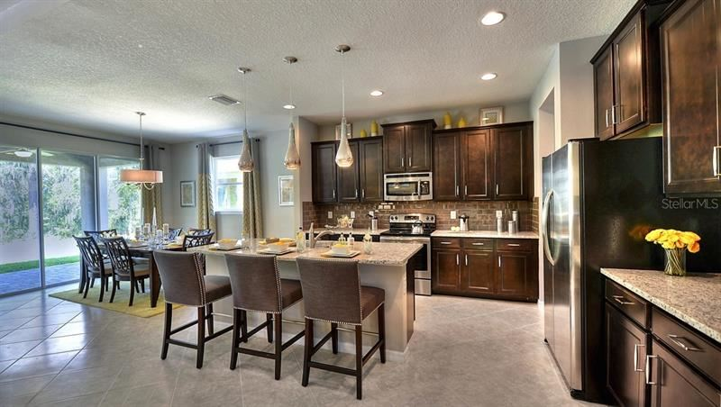 Property Image Of 2820 Living Coral Drive In Odessa, Fl