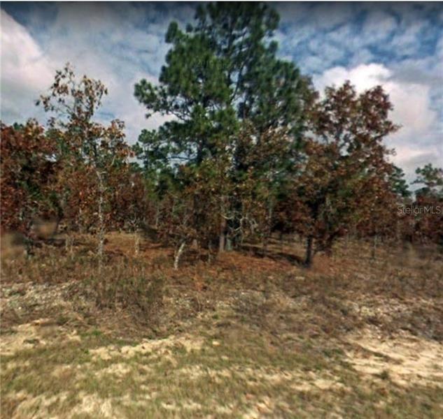 Dunnellon                                                                      , FL - $4,000