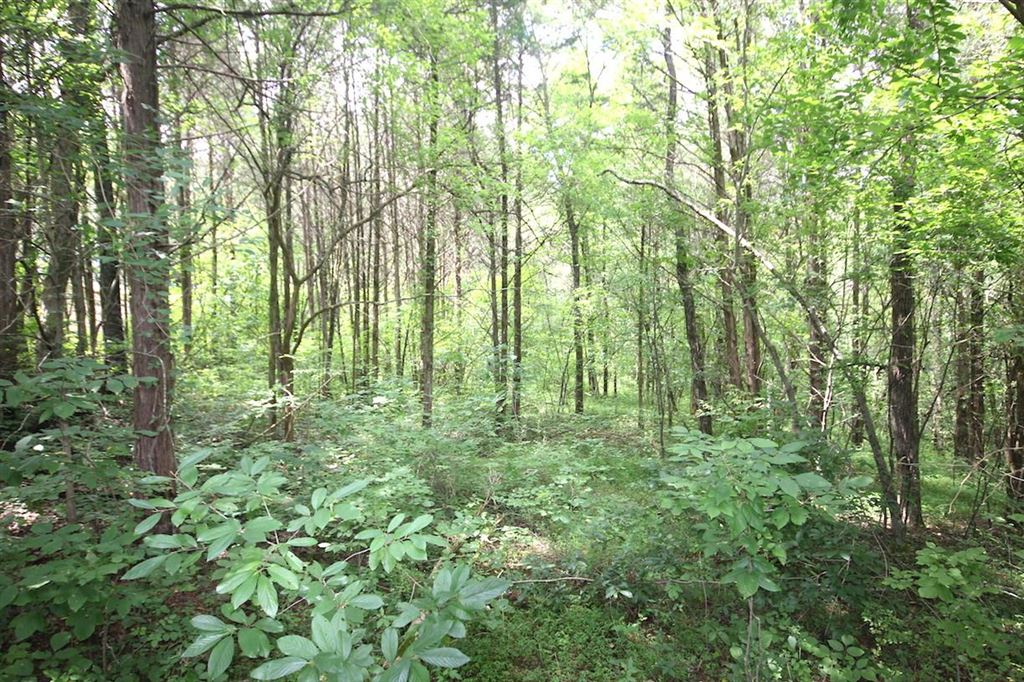 Property Image Of 0 Morchella P Lot 28/ 5.19A In Hendersonville, Tn