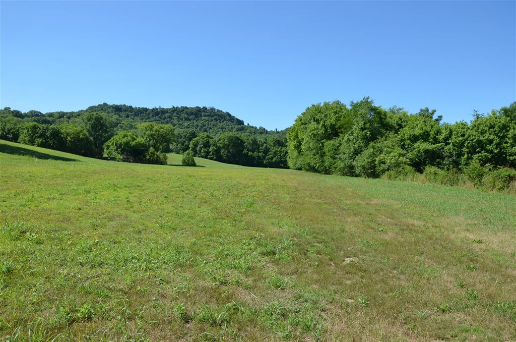 Property Image Of 1 Alexandria To Dismal Rd In Liberty, Tn