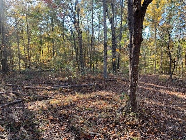 Property Image Of 91 Algie Sewell Rd In Columbia, Tn