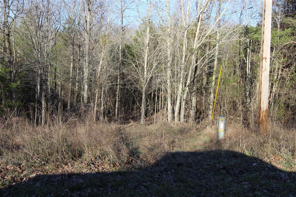 Property Image Of 0 Walker Ridge Rd In Big Rock, Tn
