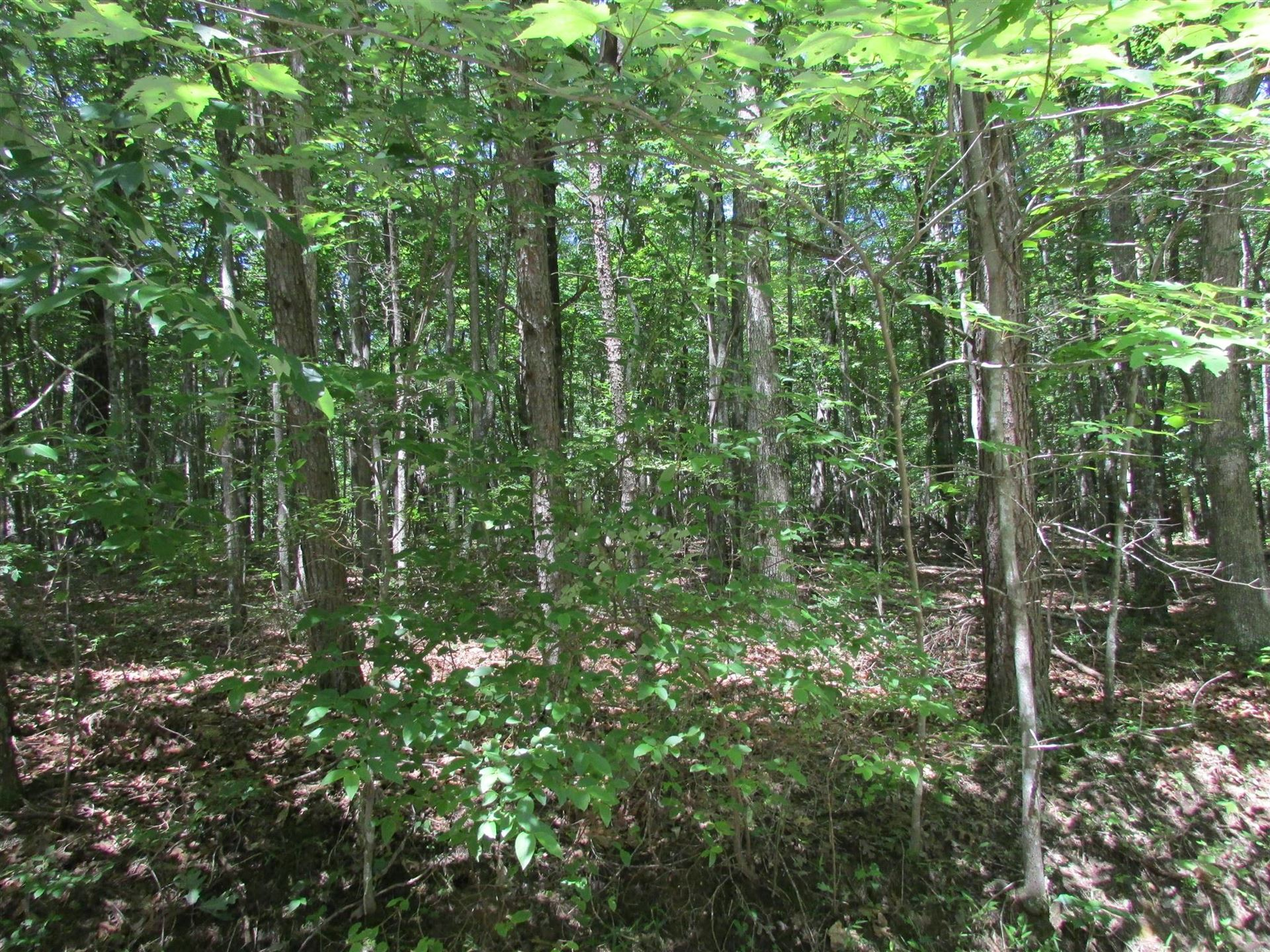 Property Image Of 0 Clifftops Ave In Monteagle, Tn