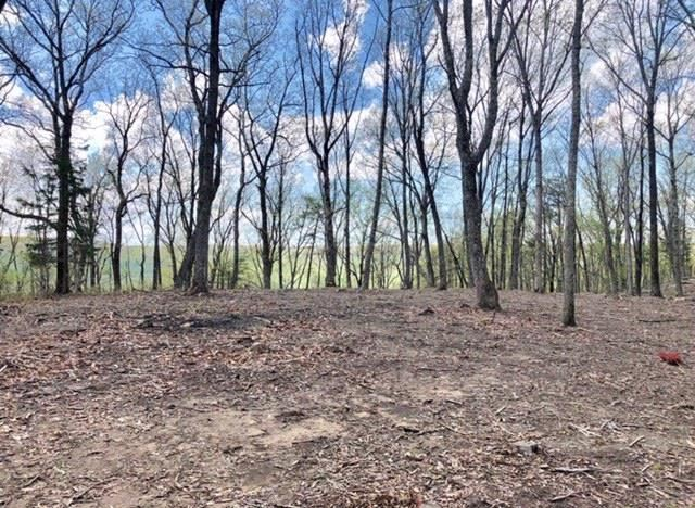 Property Image Of 705 Panther Path In Spencer, Tn