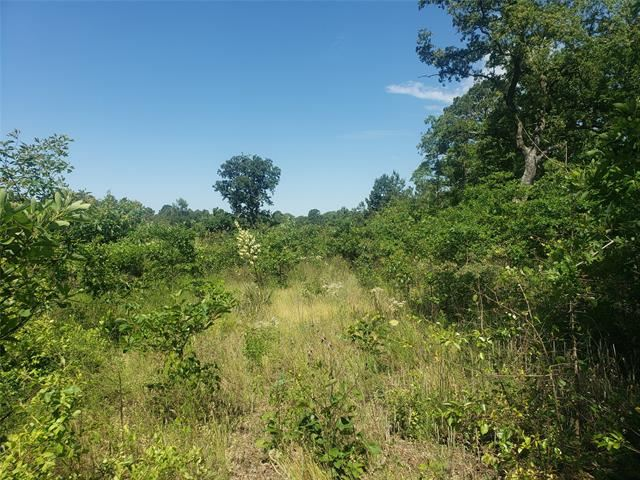 Property Image Of 15502 County Road 1227 In Flint, Tx