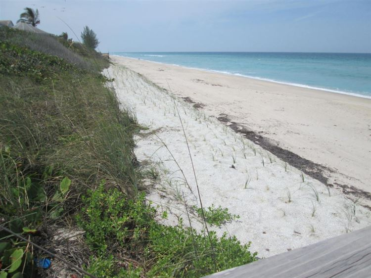 View 7995 S Highway A1a Melbourne Beach Brevard County