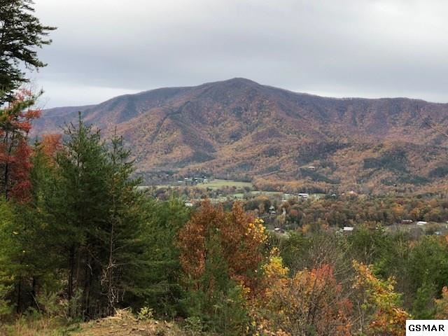 Property Image Of Lot 16 Teaberry Vista Ln In Sevierville, Tn