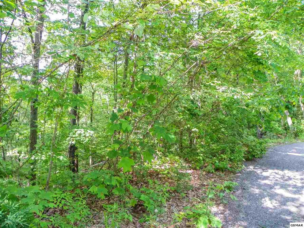 Property Image Of Lot# 65 Dollys Drive In Sevierville, Tn