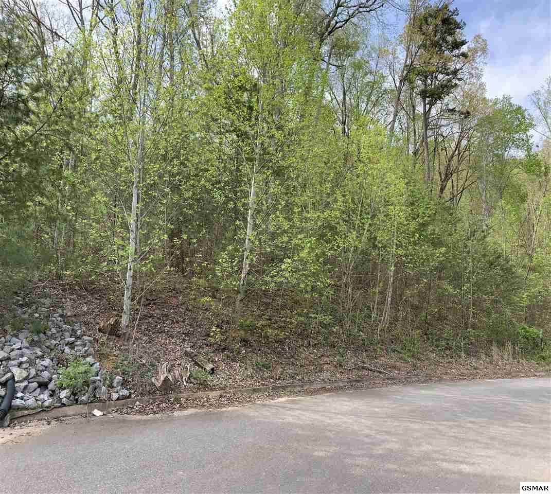 Property Image Of Lot 8 Mountain Grove Lane In Seymour, Tn