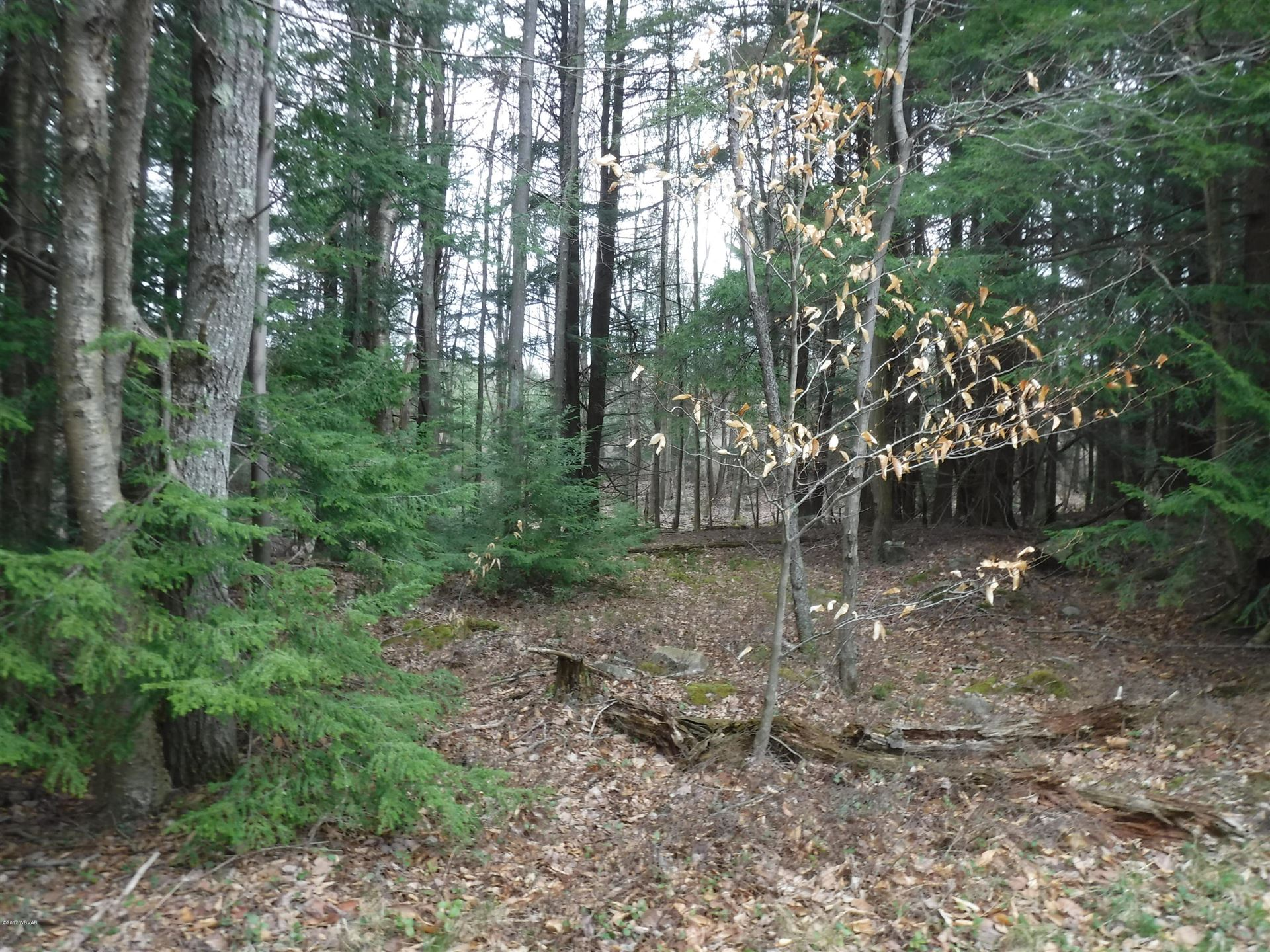 Lot 4g lark road dushore pa lots and land property for Fish real estate williamsport pa